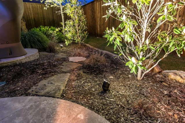 Landscape Lighting Pros Gallery Picture Small Tree