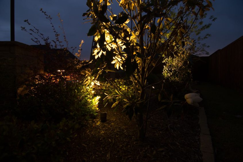 Landscape Lighting Installation Cover Photo
