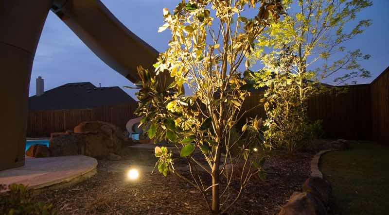 Accent Lighting For Small Tree