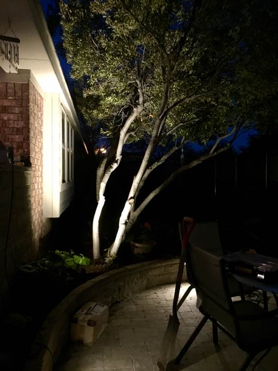 Tree and Wall Lighting