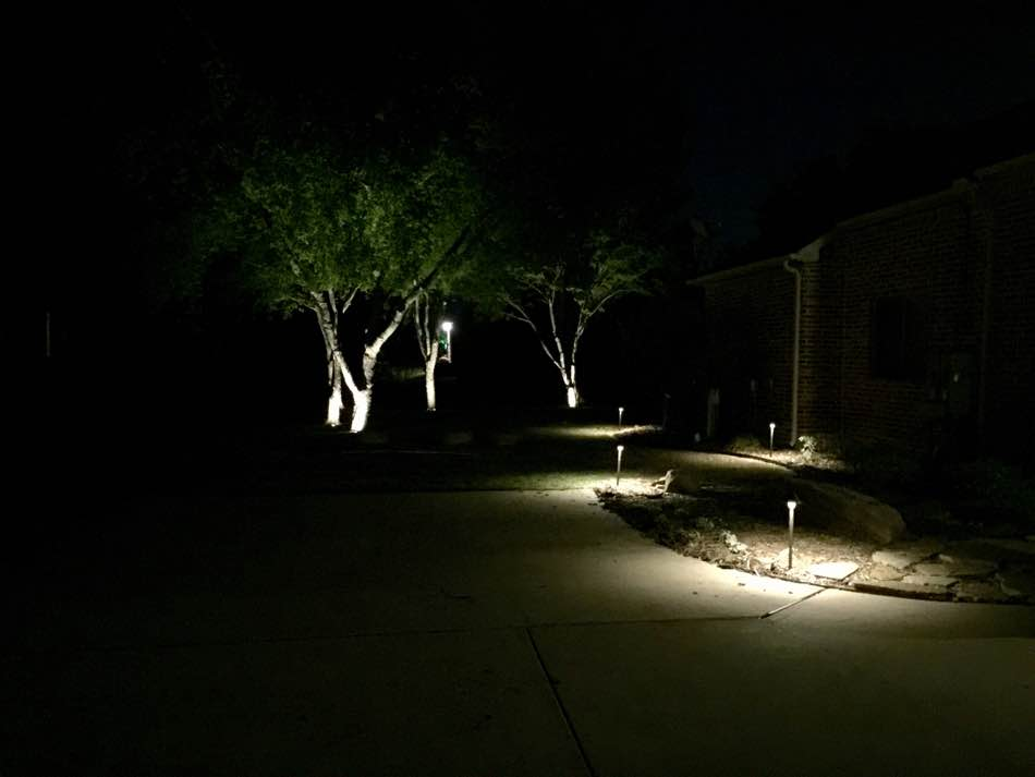 Tree and Path Lighting